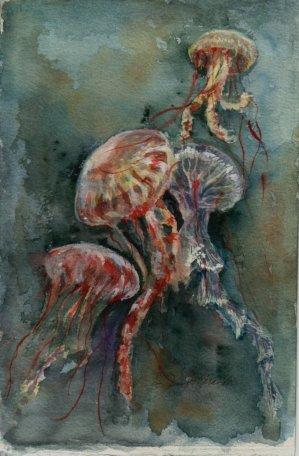 Jellies, watercolor 12x6